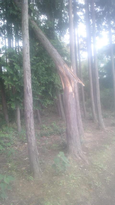 台風24号7.jpg